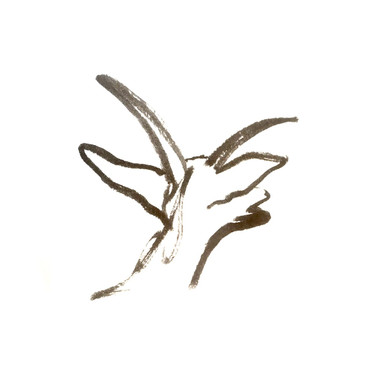 Les chevrettes du Terril (septembre 2019)