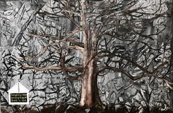 White Oak tree- a tribute