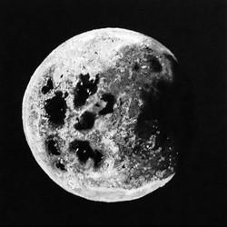 Shining Moon II