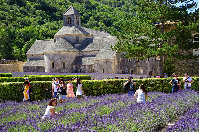 abbaye-de-senanque-1595633.jpg