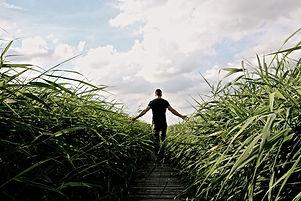 high-grass-1504284_1920_edited.jpg