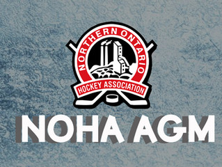 NOHA Executive Nominations Due March 15th