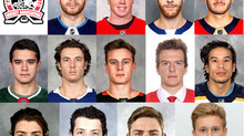 NOHA Member Highlight - AHL Players 2021