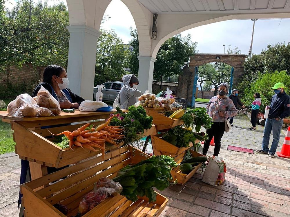 Productores de APAY participaron en la primera Feria Agroecológica