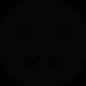 Pizzantica_logo_Black.png