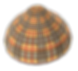 png blurberry Hat png.png