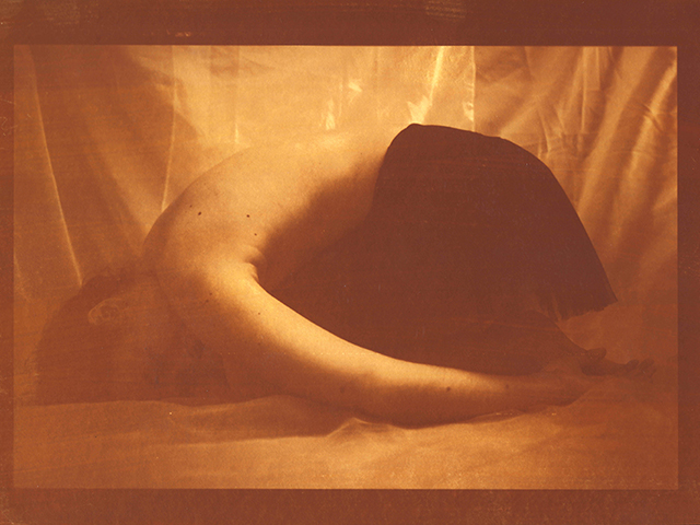Van Dyke - Marta Geraldes (2).jpg