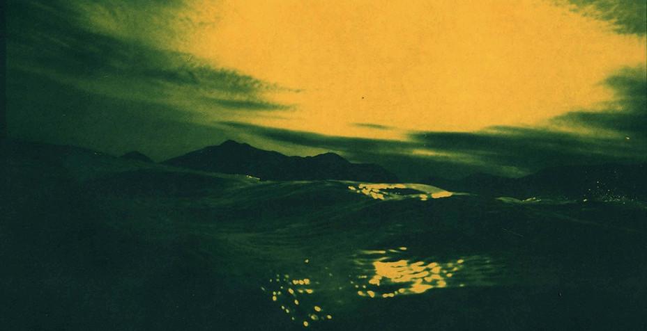 Cianótipo sobre papel amarelo de Fernanda Sattamini