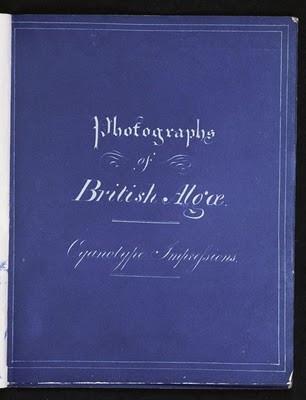 capa-do-livro-photographs-of-british-algae-cyanotype-impressions.jpg
