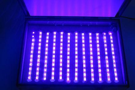 LAB UVBOX - DETALHES LED (3).JPG