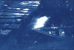 Lab-imersao - Cianotipo - Mireille Pic (1)