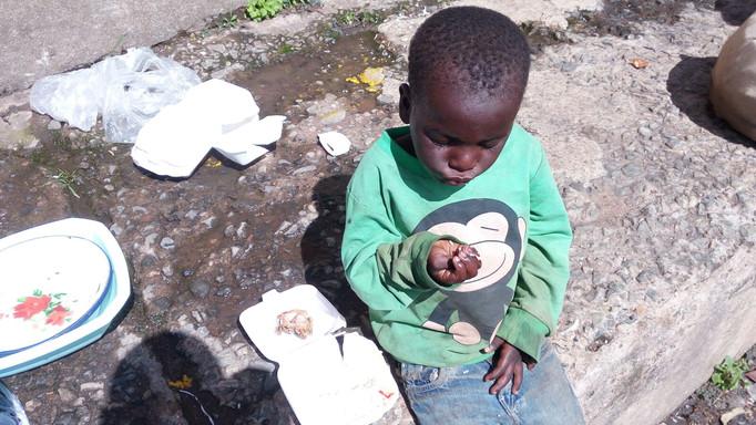 First feeding programme