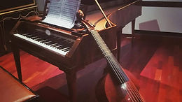 La Viola Galante