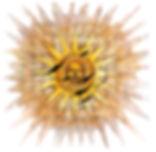 Fludd - Sun frilagd LB.jpg