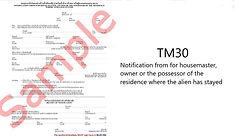 tm30 Wix.jpg