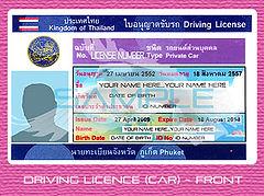 Driving Licence Blank 1.jpg