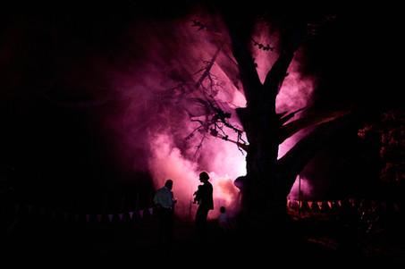 Phicole-Fest-02-1233.JPG