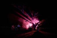 Phicole-Fest-02-1235.JPG