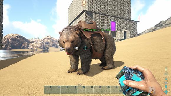 180 Unleveled Dire Bear 🐻 W/Saddle