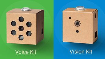 Google AIY voice and vision kits.jpg