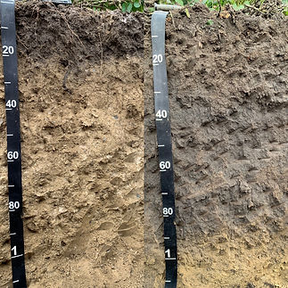 Erosion Upper and Lower Side-by-Side.jpe