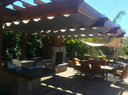 Canopy Photo
