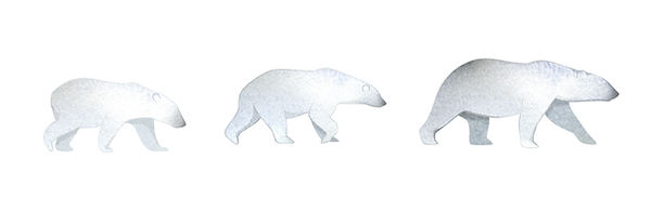 polar bears_edited.jpg