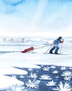 Ann Daniels - Frost Flowers