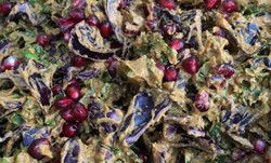 Red Cabbage and Kale Coleslaw