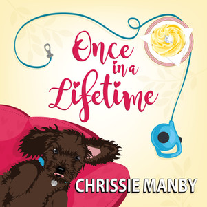 Once in a Lifetime Audio Book Cover