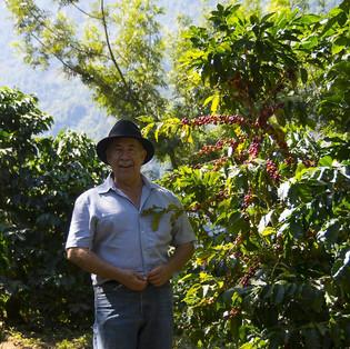 Finca // Guatemala