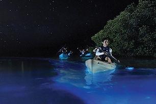Bio Bay Vieques I VENTURES.jpg