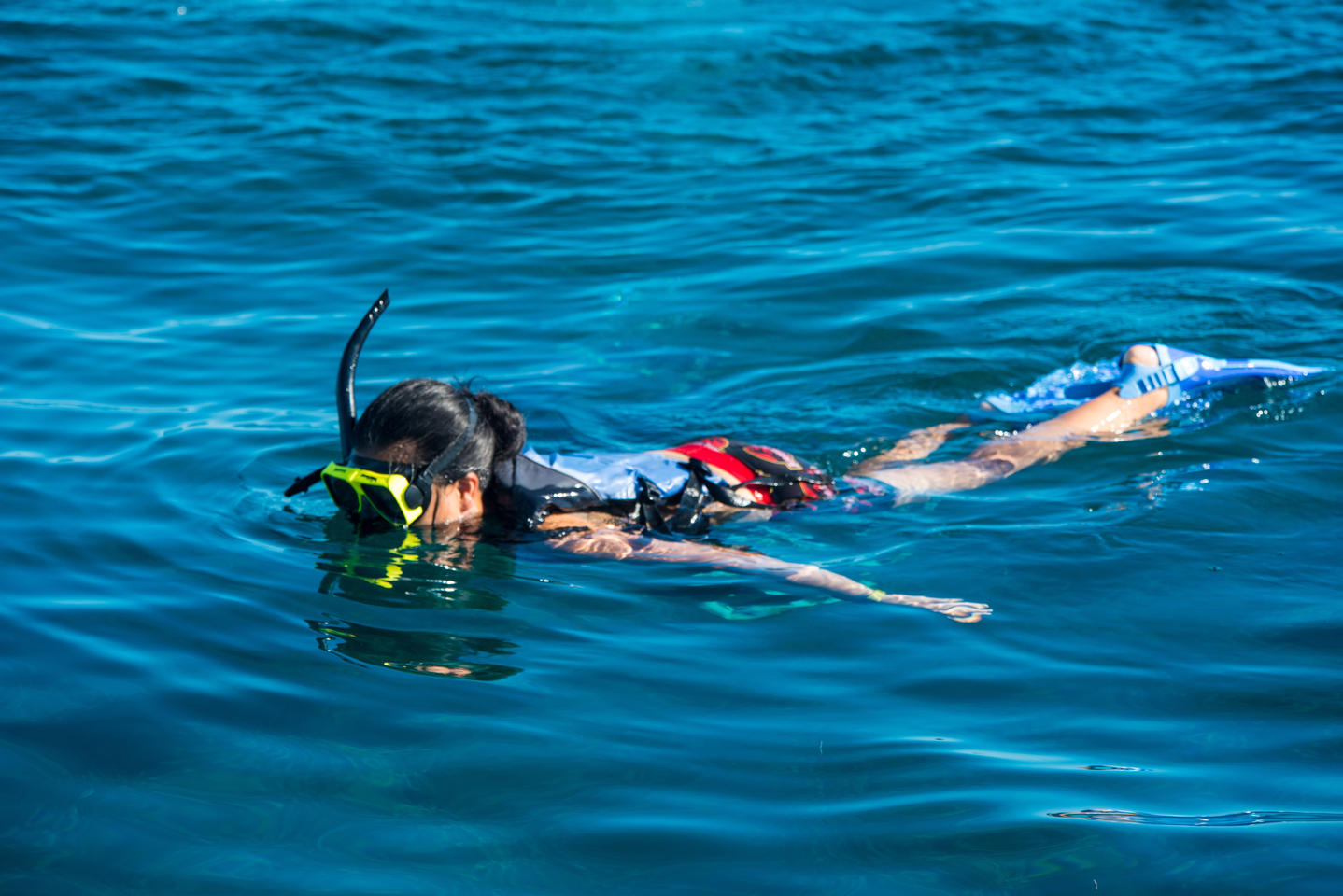 Snorkeling and Beach Tour Vieques Island from San Juan