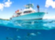 Culebra-Island-Snorkel-and-Beach-Tour_