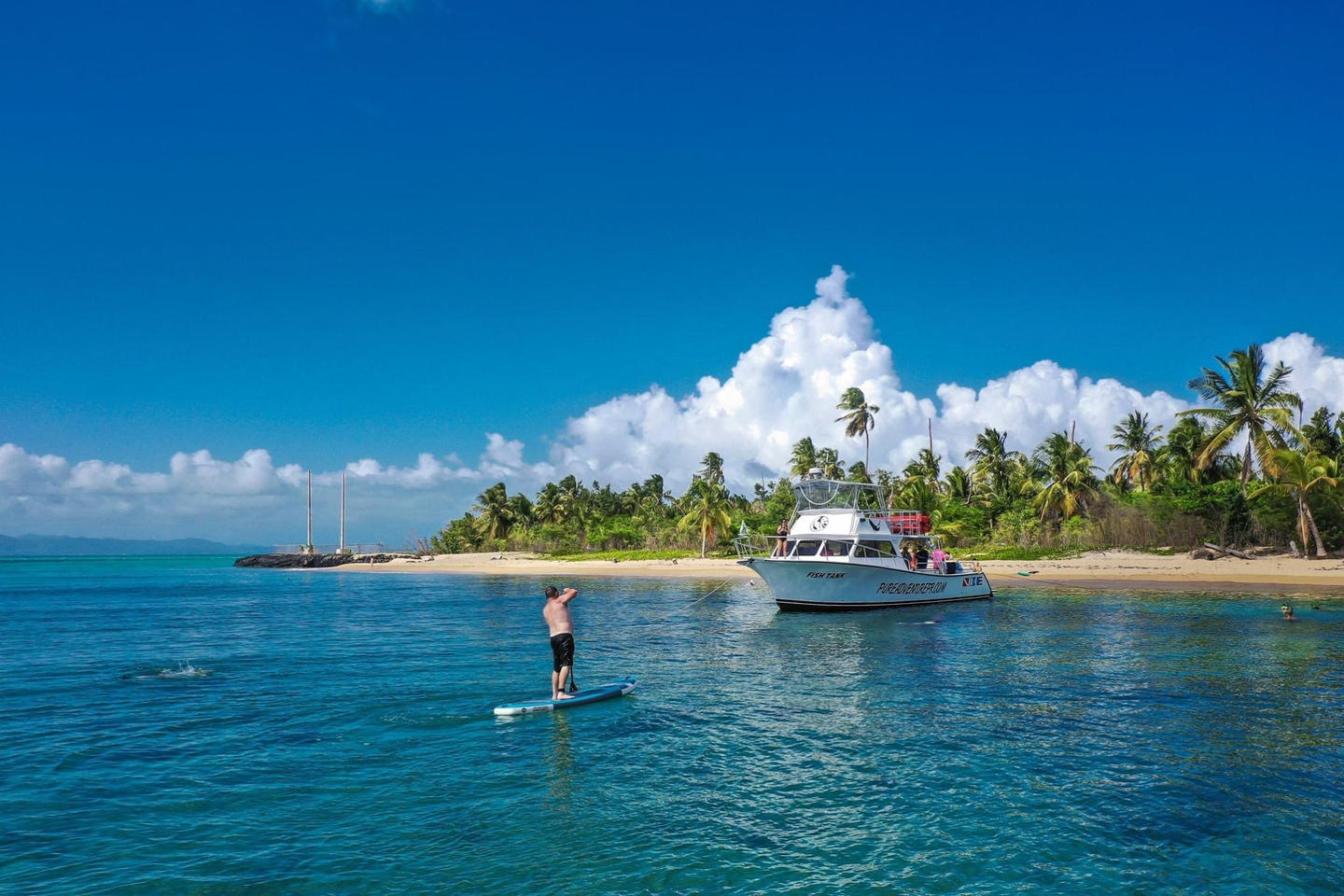 Hop on a paddle board in Vieques Snorkeling Tour