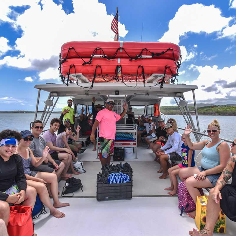 Vieques Island Snorkeling Tour I VENTURE