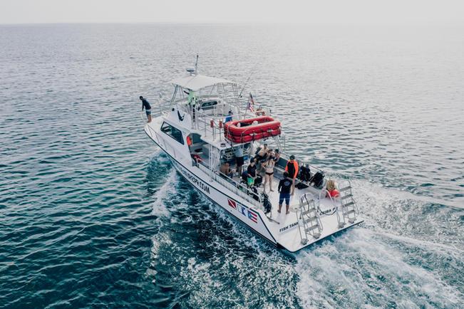 Vieques island Boat Tour I VENTURES
