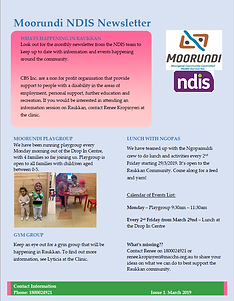 NDIS WEBSITE 1.PNG
