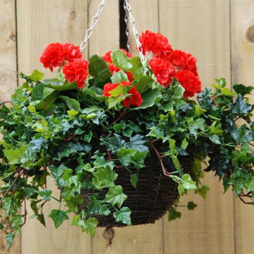 Geranium: Red Hanging Basket