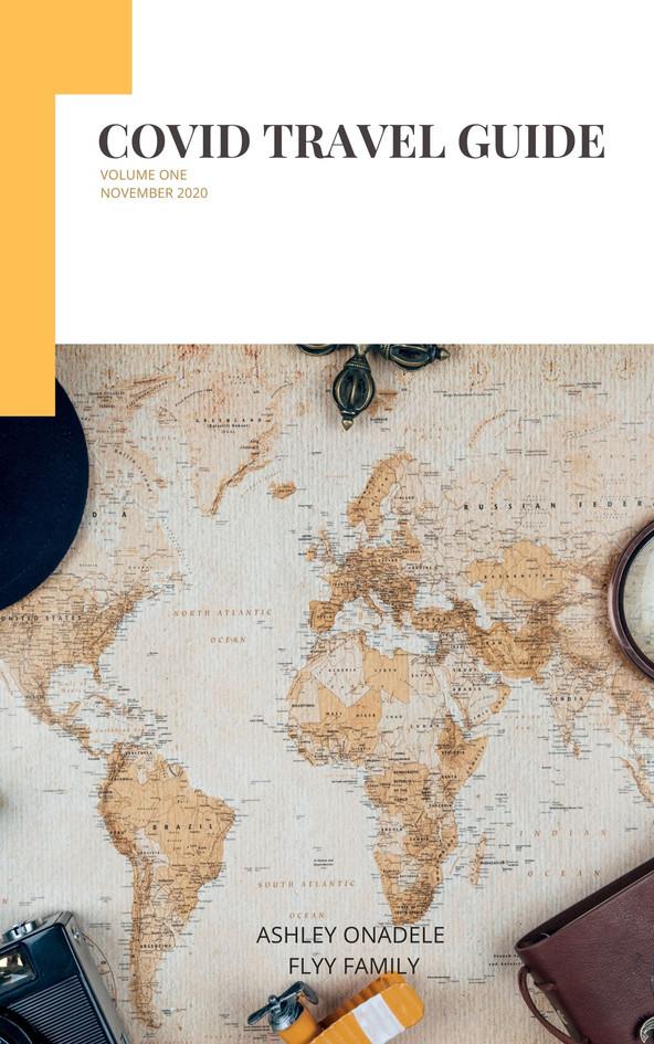 COVID Travel guide (2).jpg