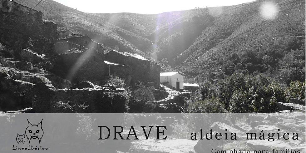 DRAVE - A ALDEIA MÁGICA