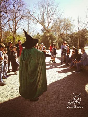 Tour Porto com a Magia de Harry Potter