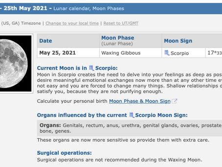 Tuesday, May 25, 2021