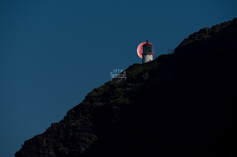 Lighthouse Eclipse