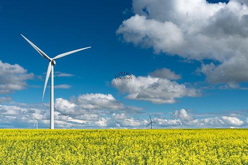 Prairie Energy