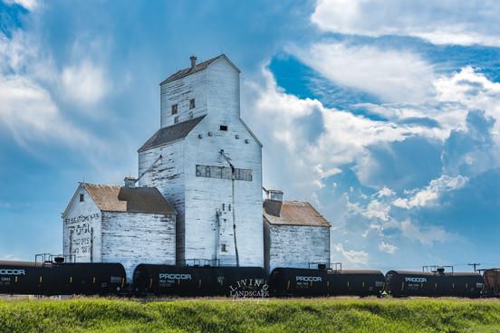 Prairie Sentry