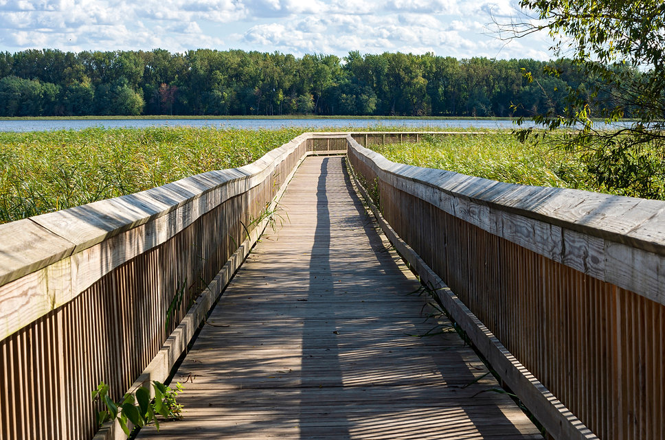 boardwalk at long meadow lake area of mi