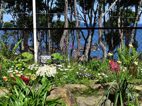 春のガーデン&オープンカフェ
