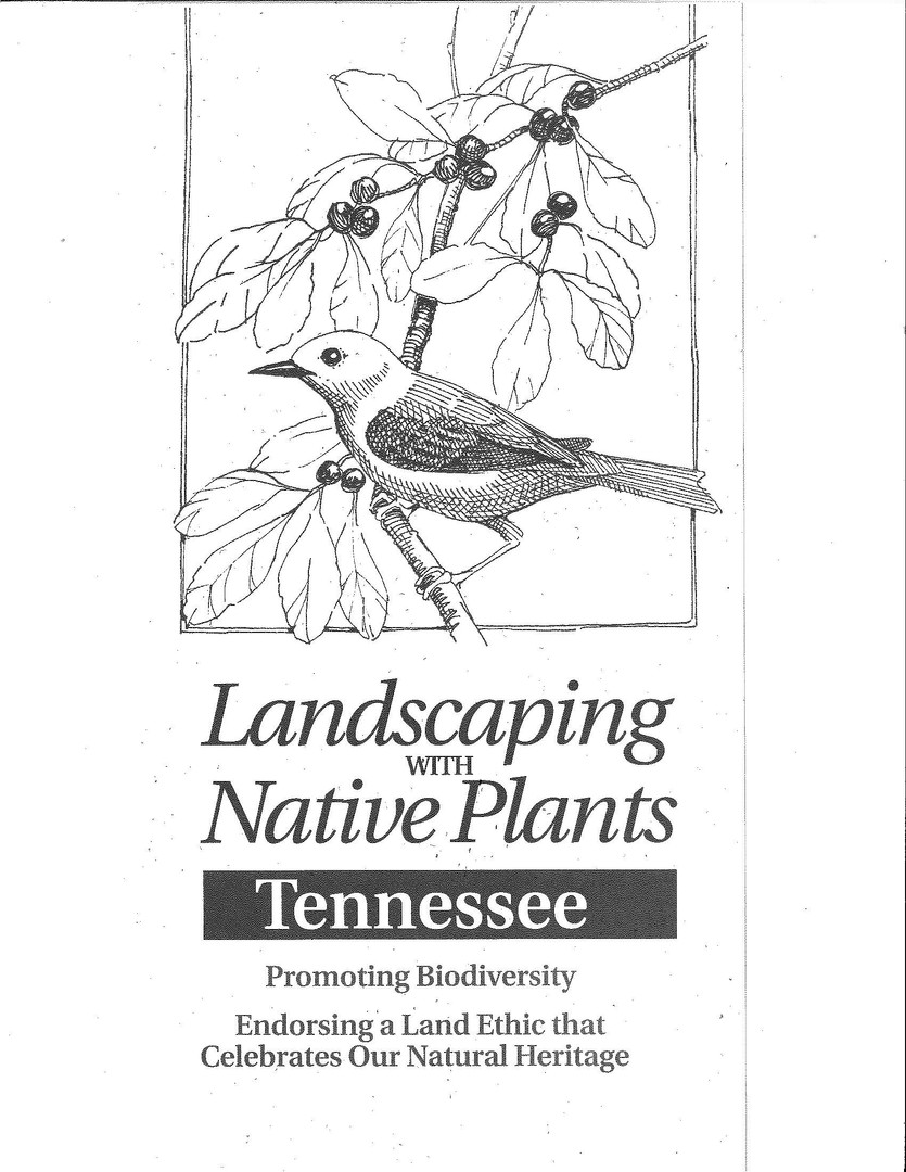 TNIPC landscaping guide.jpg