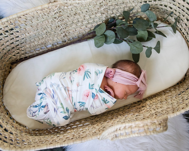 newborn-moses-basket